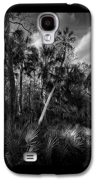 Palms And Palmettos Galaxy S4 Case
