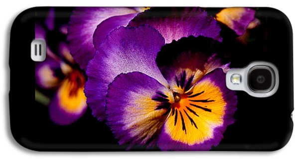 Pansies Galaxy S4 Case