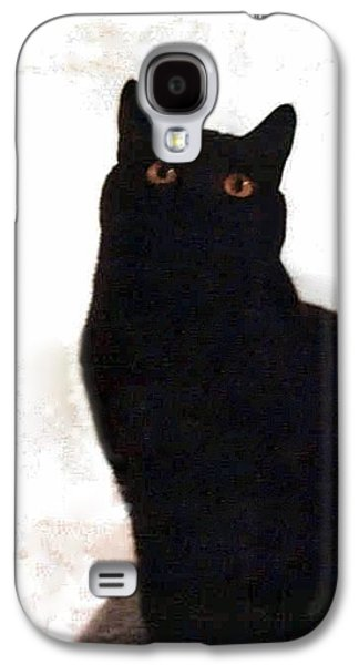 Panther The British Shorthair Cat Galaxy S4 Case