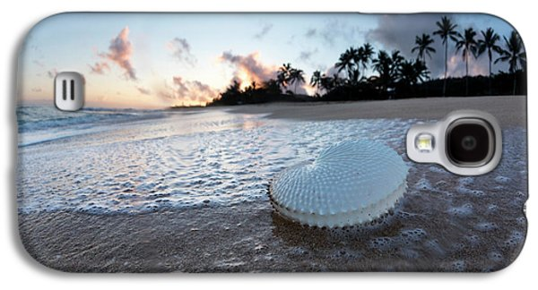 Paper Nautilus Bubbles Galaxy S4 Case