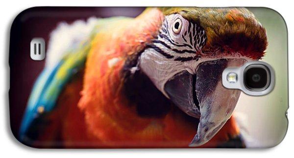 Parrot Selfie Galaxy S4 Case