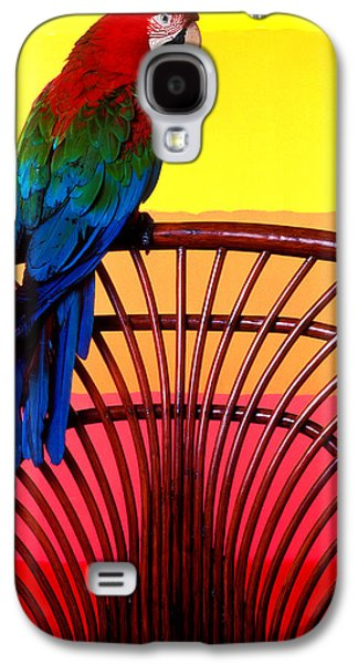 Parrot Sitting On Chair Galaxy S4 Case