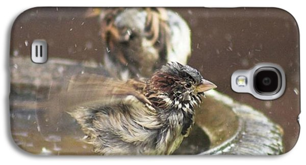 Galaxy S4 Case - Pass The Towel Please: A House Sparrow by John Edwards