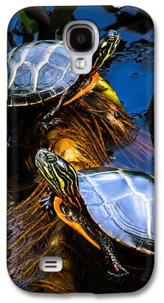 Passing The Day With A Friend Galaxy S4 Case by Bob Orsillo