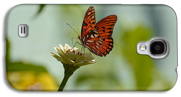 Passion Butterfly On White Zinnia Galaxy S4 Case