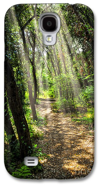 Path In Sunlit Forest Galaxy S4 Case by Elena Elisseeva