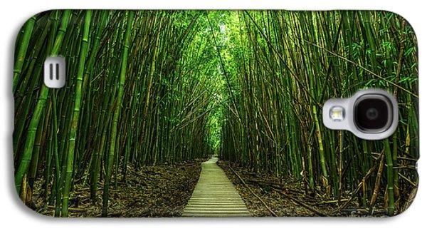Path To Zen Galaxy S4 Case