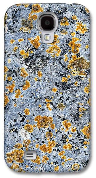 Pattern In Lichen  Galaxy S4 Case by Tim Gainey