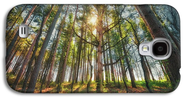 Peaceful Forest 5 - Spring At Retzer Nature Center Galaxy S4 Case