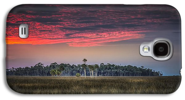 Peaceful Palms Galaxy S4 Case by Marvin Spates