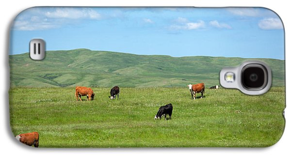 Peaceful Pasture Galaxy S4 Case by Todd Klassy