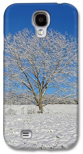Peaceful Winter Galaxy S4 Case by Susan Leggett