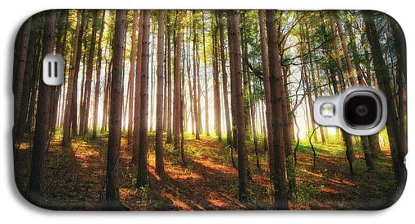 Peaceful Wisconsin Forest 2 - Spring At Retzer Nature Center Galaxy S4 Case