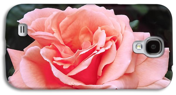 Peach Rose Galaxy S4 Case by Rona Black