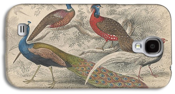 Peacocks Galaxy S4 Case by Rob Dreyer