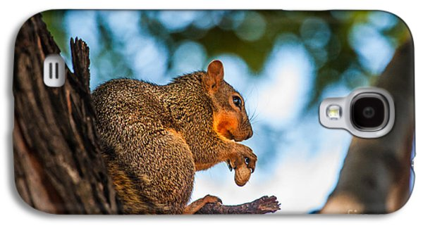 Peanut Time Galaxy S4 Case by Robert Bales