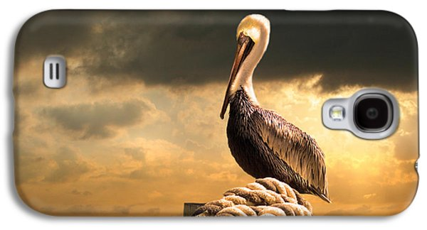 Pelican After A Storm Galaxy S4 Case by Mal Bray