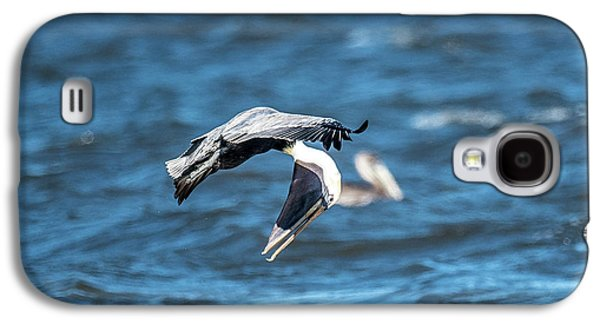Pelican Checking His Six Galaxy S4 Case by Paul Freidlund