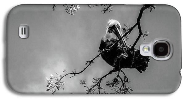 Pelican Connection Galaxy S4 Case