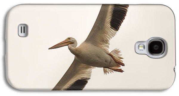 Pelican In Flight Galaxy S4 Case by Paul Freidlund