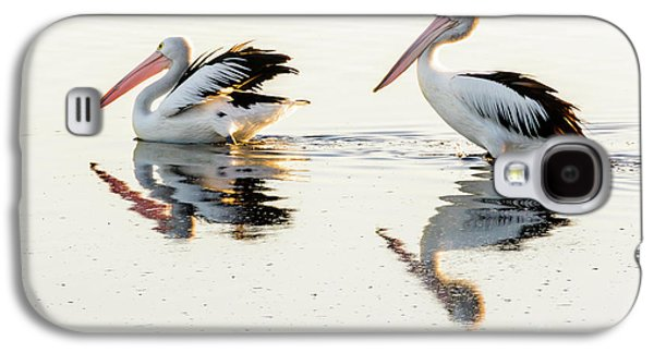 Pelicans At Dusk Galaxy S4 Case by Werner Padarin