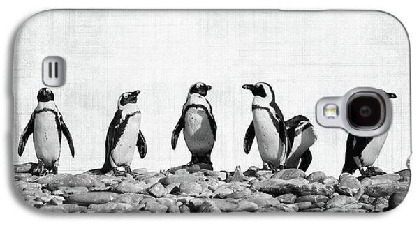 Penguin Galaxy S4 Case - Penguins by Delphimages Photo Creations