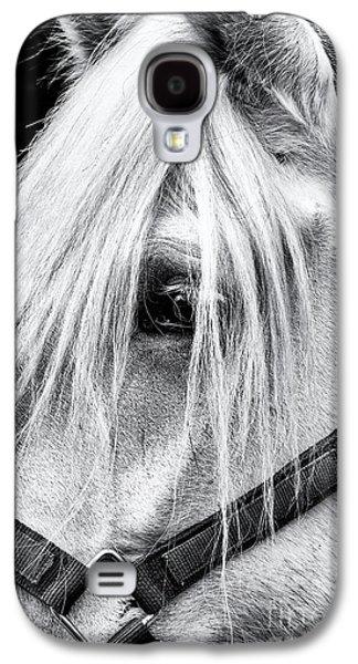 Percheron Horse Galaxy S4 Case by Tim Gainey