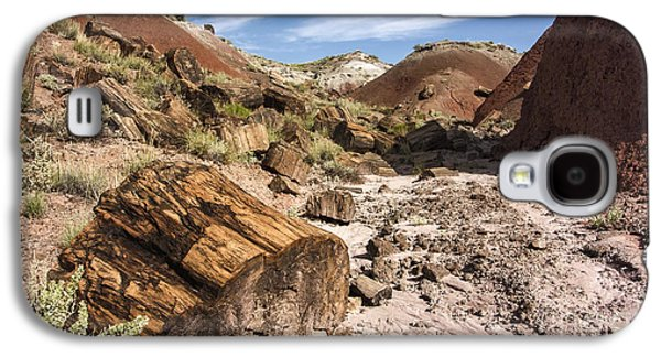 Petrified Wood In The Painted Desert Galaxy S4 Case by Melany Sarafis