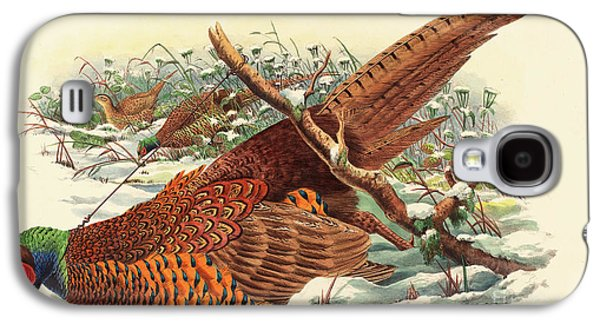 Phasianus Colchicus, Ring Necked Pheasant Galaxy S4 Case by John Gould