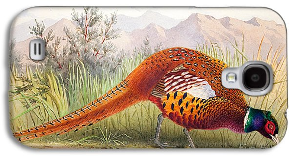 Pheasant Galaxy S4 Case