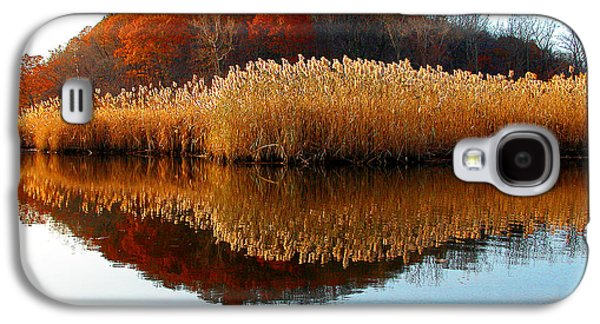 Piermont Backwater Galaxy S4 Case