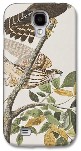 Pigeon Hawk Galaxy S4 Case by John James Audubon