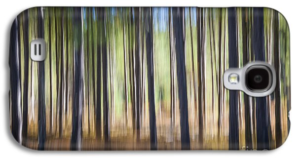 Pine Forest Galaxy S4 Case by Elena Elisseeva