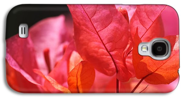 Orange Galaxy S4 Case - Pink And Orange Bougainvillea by Rona Black