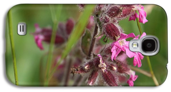 Pink Campion In August Galaxy S4 Case