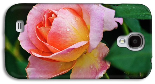 Galaxy S4 Case featuring the photograph Pink Rose by Bill Barber