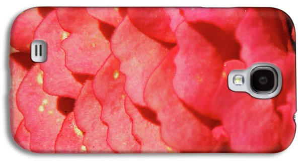 Zinna Flower Petals  Galaxy S4 Case by Carol F Austin