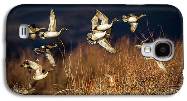 Pintails And Wigeons Galaxy S4 Case