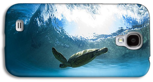 Turtle Galaxy S4 Case - Pipe Turtle Glide by Sean Davey