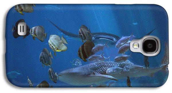 Placid Kingdom  Galaxy S4 Case