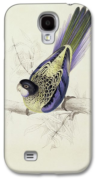 Platycercus Brownii, Or Browns Parakeet Galaxy S4 Case by Edward Lear