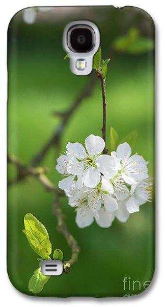 Plum Blossom Galaxy S4 Case
