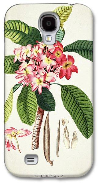 Plumeria Botanical Print Galaxy S4 Case