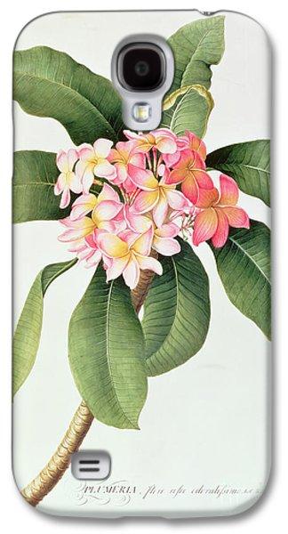Plumeria Galaxy S4 Case