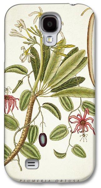 Plumeria Obtusa Botantical Print Galaxy S4 Case