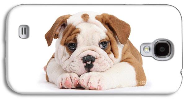 Po-faced Bulldog Galaxy S4 Case