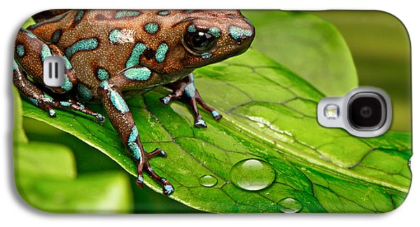 poison art frog Panama Galaxy S4 Case