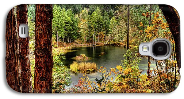Pond At Golden Or. Galaxy S4 Case