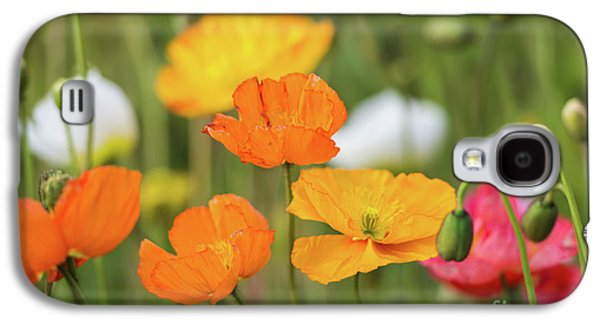 Galaxy S4 Case featuring the photograph  Poppies 1 by Werner Padarin