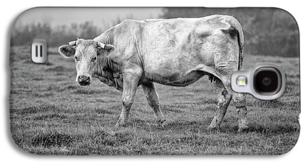 Portrait Of A Cow Galaxy S4 Case by Nailia Schwarz